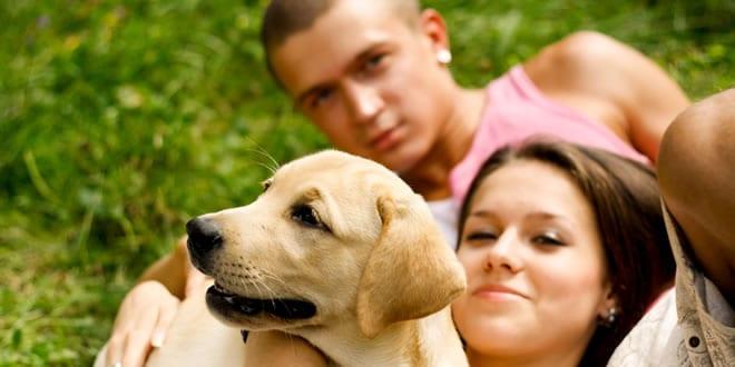 environmentally-friendly-pets